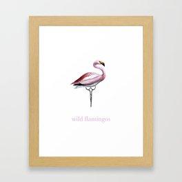 Wild Flamingos Framed Art Print