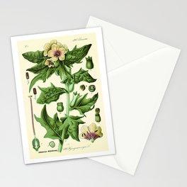 hyoscyamus niger (black henbane or stinking nightshade) - Vintage botanical illustration Stationery Cards