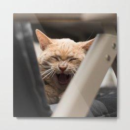 Yawning Esmeralda Metal Print