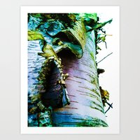 birch Art Prints featuring birch by Jeni Decker