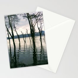 Twilight trees magic lake. African savanna Stationery Cards