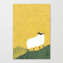 MOUNTAIN SHEEP Canvas Print