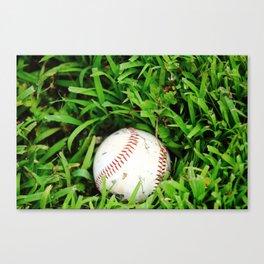 The Lost Baseball Canvas Print