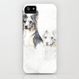 Collie dog iPhone Case