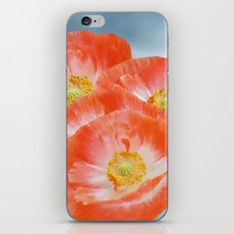 The beauty of poppies iPhone Skin