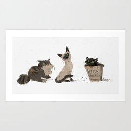 Cats Cats Cats Art Print