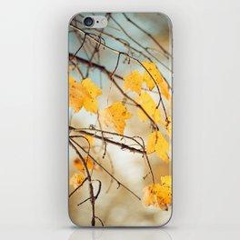 Autumn Botanical -- Golden Maple Leaves iPhone Skin