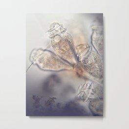 Epistylis Inspiration Metal Print