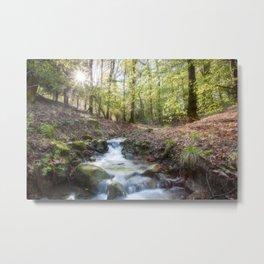 Enchanted Stream Metal Print