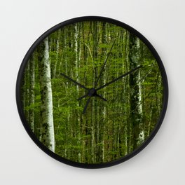 Nature photography. Irati Forest, Navarra. Spain. Wall Clock