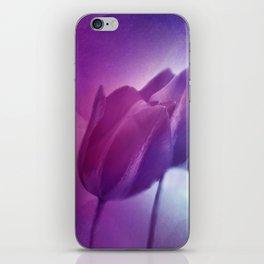 4 purple tulips on watercolor iPhone Skin