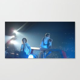 Harry Styles.Niall Horan Canvas Print
