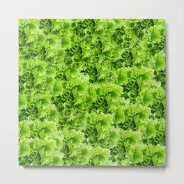 Lettuce Metal Print
