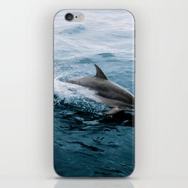 Dolphin in the Atlantic Ocean - Wildlife Photography iPhone Skin