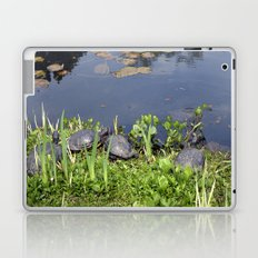 Turtles by a water pond and water plants in a garden.  Nature  photography. Laptop & iPad Skin