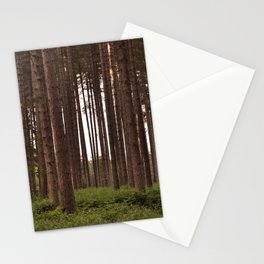 Forest Landscape - Nature Photography Stationery Cards