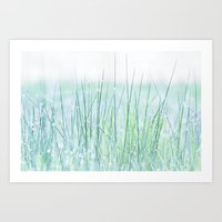 Field of grass in a fresh spring morning Art Print