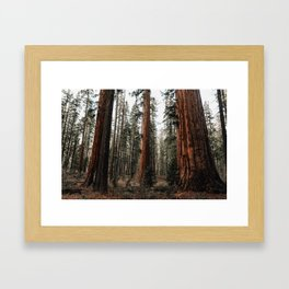 Walking with Giants Framed Art Print