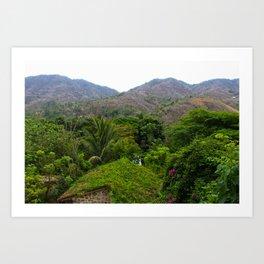 Dreamy Mexican Jungle Art Print