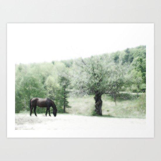 Horse and Tree Art Print
