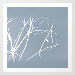 Winter Branches Art Print