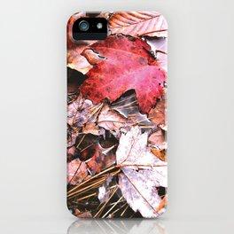 Brisk Autumn  iPhone Case
