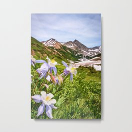 HIGH COUNTRY WILDFLOWERS COLORADO COLUMBINE MOUNTAIN FLOWER Metal Print