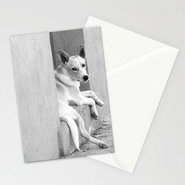 Perrito de pueblo Stationery Cards