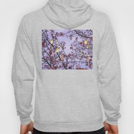 cedar waxwings and berries Hoody