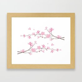 Cherry Blossom - Transparent Background Framed Art Print