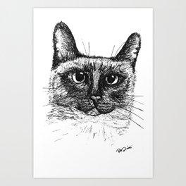 Siamese Cat Sketch Art Print