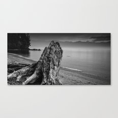 Considering the Waves Canvas Print