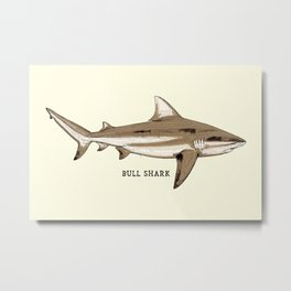 BULL SHARK Vintage Art Sketch for the Ocean Lovers Anglers and Fisherman Metal Print