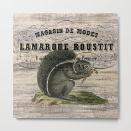 french country scripts fall autumn woodland animal grey squirrel Metal Print