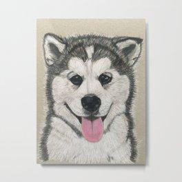 Husky puppy Metal Print