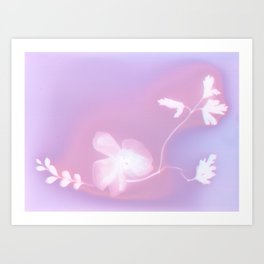 Lumen Print Art Print