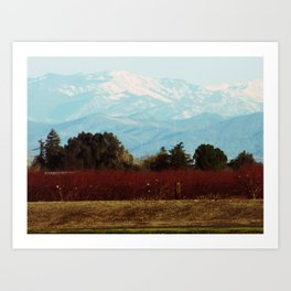 Central Valley, California Art Print