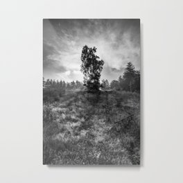 sun behind the tree Metal Print