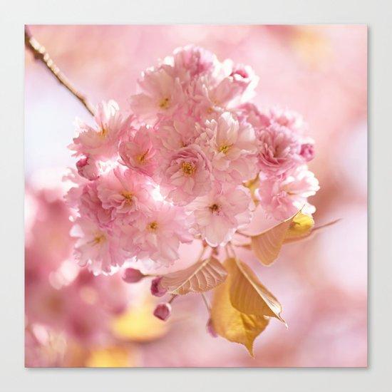 Sakura - Cherryblossom - Cherry blossom - Pink flowers on #Society6 Canvas Print
