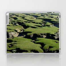 MOSSY ROCKS Laptop & iPad Skin