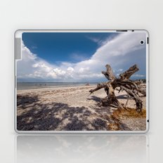 Ent Marching Towards Sea Laptop & iPad Skin