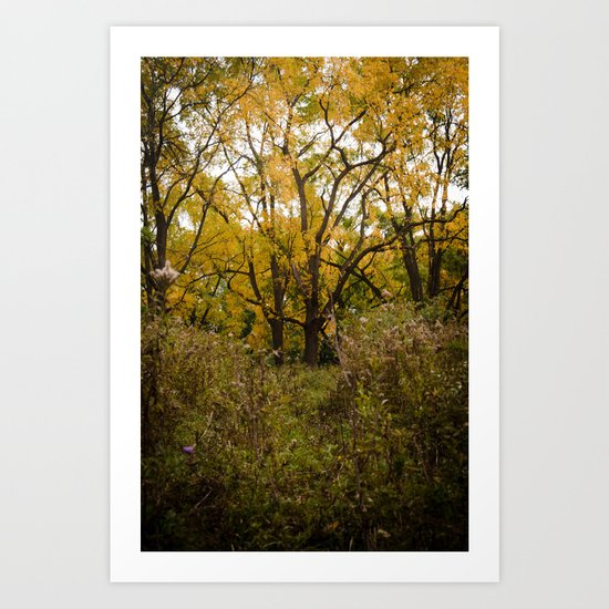Walk Through Fall Art Print
