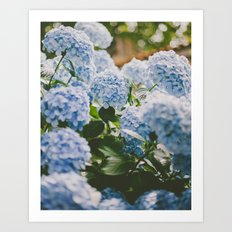 Little Blue Art Print