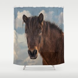 Icelandic Horse in the Sky Shower Curtain