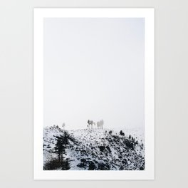 Lonely Winter - Pacific Northwest Nature Photography Art Print