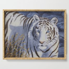 White Tiger with Blue Eyes Serving Tray