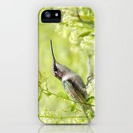 Hummingbird XIV iPhone Case