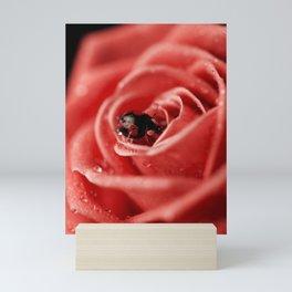 Red rose with black ladybug Mini Art Print