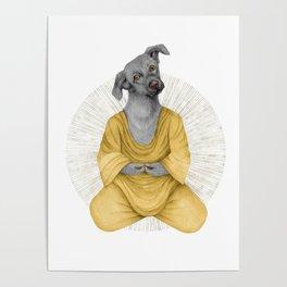 almost meditating dog 1 Poster