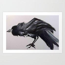 A Crow Art Print